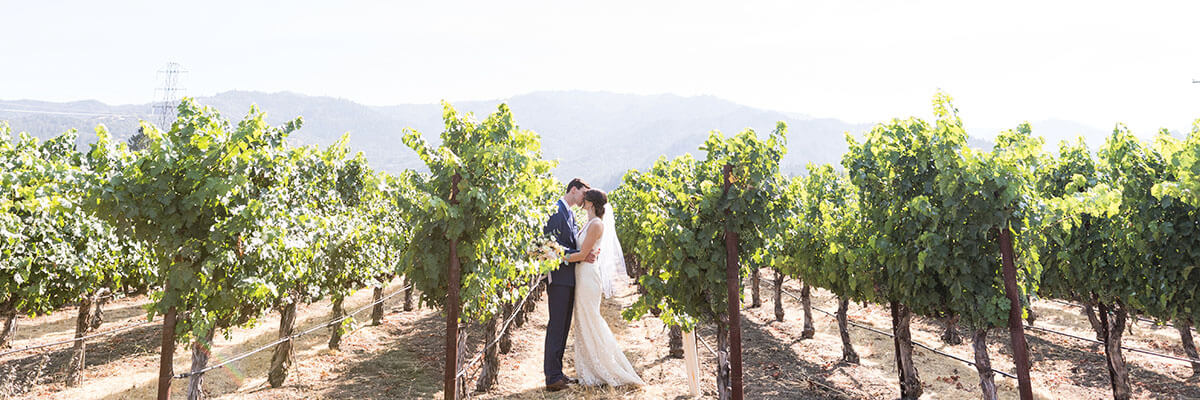 Wedding kiss among the vines